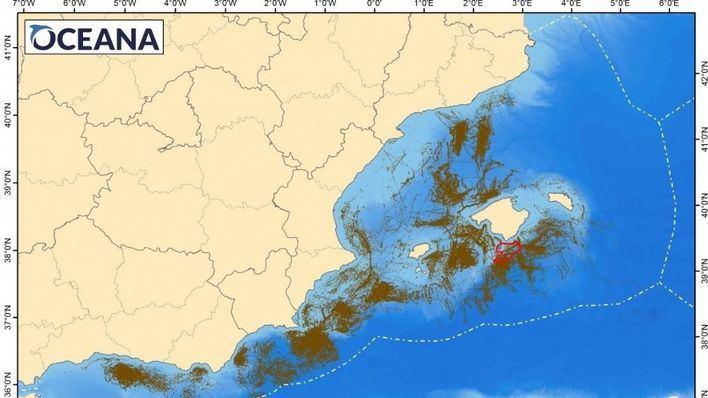 "Oceana critica que 17 pesqueros ""frenen"" la ampliación de Cabrera"