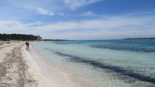 Recogida de plásticos y colillas en las playas de la Colònia de Sant Jordi