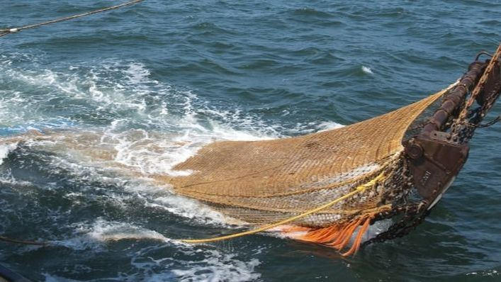 La parada parcial de la flota logra recuperar los caladeros de Balears