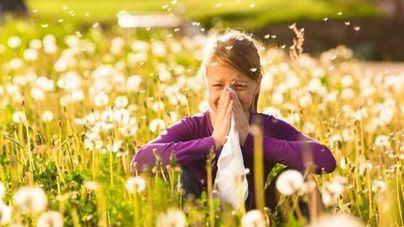 Ocho millones de personas sufren alergia al polen en España