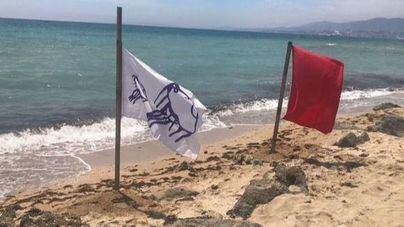 Imagen del cierre de la playa de este miércoles