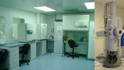 El bote de análisis hallado el viernes en Palma no contiene ébola