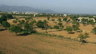 ARCA arranca un programa de visitas sobre agricultura, paisaje y patrimonio