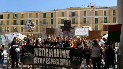Más de 300 personas se manifiestan en favor de los derechos de los animales y contra su explotación