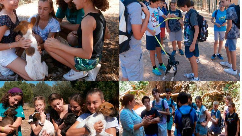 Estimal's: el proyecto educativo del IES Bendinat sobre bienestar animal