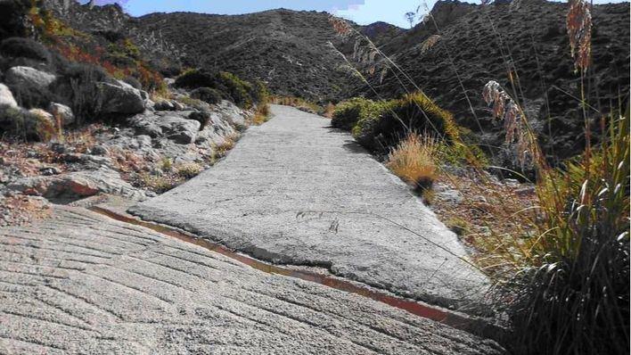 Uno de los caminos pavimentados en terreno protegido