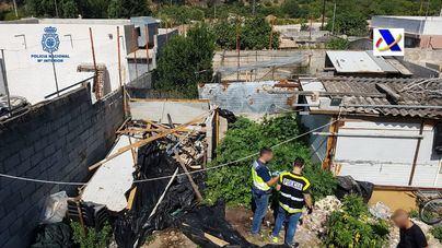 Una persona detenida y dos plantaciones de marihuana desmanteladas en 'El Hoyo'