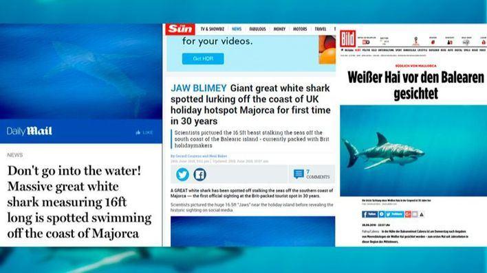 El avistamiento de un tiburón blanco cerca de Cabrera, en las portadas británicas y alemanas