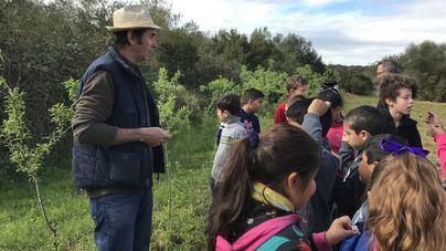 Casi 80.000 alumnos de Balears participan en el programa 'Viu la cultura'