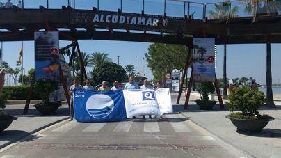 Alcudiamar recibe la bandera Azul y la 'Q' de calidad turística