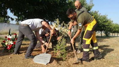 Homenaje en el aeródromo de Son Bonet al piloto de incendios forestales del Ibanat fallecido