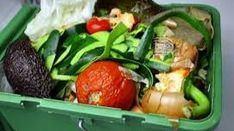 Comida, papel sucio, palillos o heces de animales, entre los residuos orgánicos