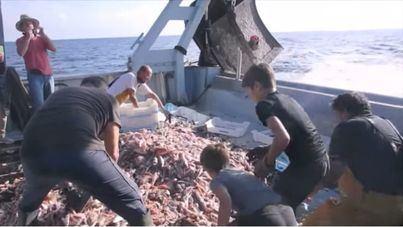 El ISBA lanza ayudas de 1,5 millones para agricultores y pescadores
