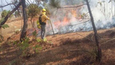Aemet advierte del alto riesgo de incendio forestal este viernes en Mallorca