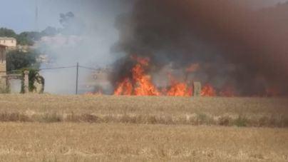 Bomberos de Mallorca y la Policía Nacional sofocan un incendio en la carretera de Sineu a Ariany