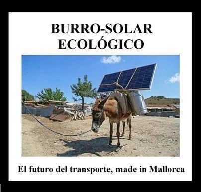 Inventan el burro-solar como medio de transporte alternativo ante la prohibición del diésel