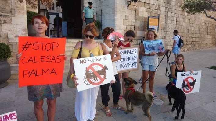 Animalistas exigen a Cort que los dueños de galeras cumplan la ordenanza