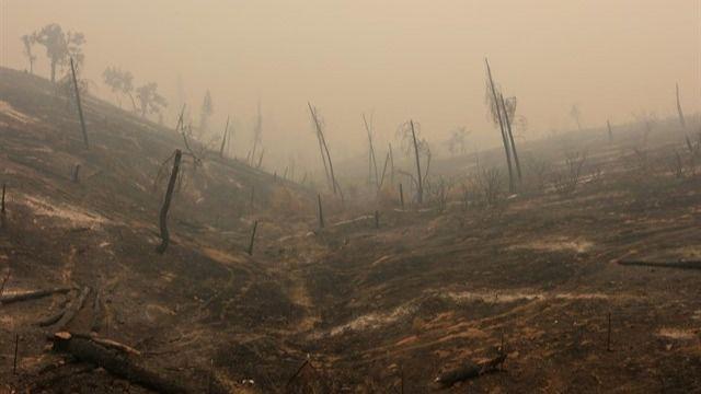 Ya son seis los muertos por el incendio declarado en el norte de California