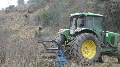 Endesa invierte 930.000 euros en los trabajos de limpieza de masa forestal