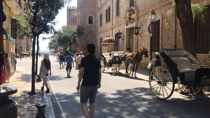 Imagen de este mismo jueves de un caballo de galera al sol en plena ola de calor
