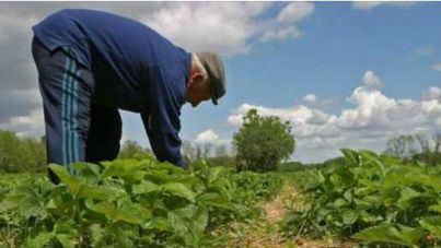 """Payeses piden retirar la Ley Agraria por """"falta de consenso"""" y proponen volver a la norma de 2014"""