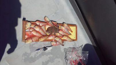 Interceptan varios pescadores furtivos de raors en las reservas del Migjorn y El Toro