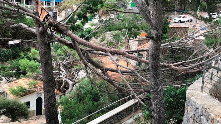 18 incidentes en el norte de Mallorca por la tormenta, entre ellos un cap de fibló en Sa Calobra