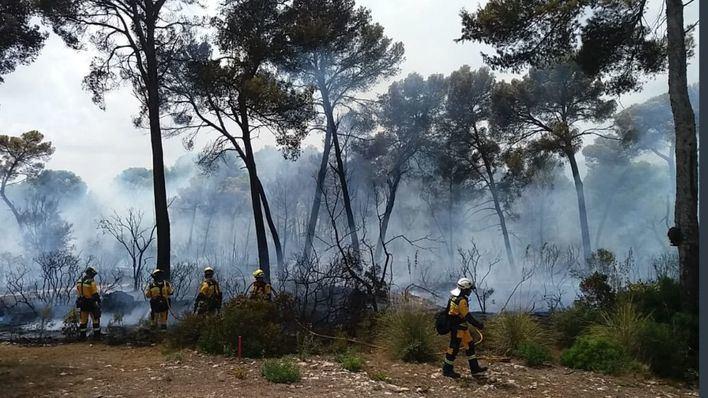 Controlados los dos incendios forestales de Palma y Son Servera