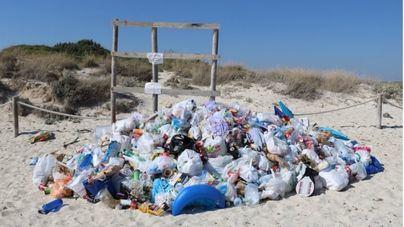 La Conselleria de Medi Ambient cede y enviará brigadistas del Ibanat a limpiar la playa de Es Trenc