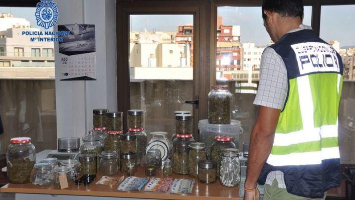 Operación antidroga en una asociación de cannabis en Port de Pollença