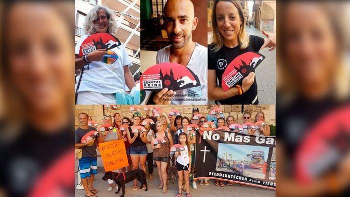 Campaña anti galeras en Palma en varios idiomas: