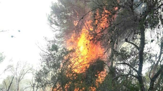 Controlado el incendio de Can Magraner tras quemar 11,4 hectáreas de pinar