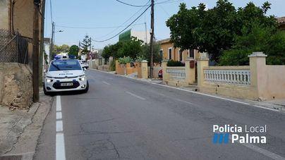 La Policía Local de Palma busca al autor de un atropello que se dio a la fuga en la carretera d'Esporles