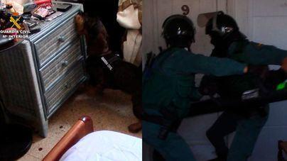 La Guardia Civil detiene a un grupo de siete narcotraficantes que distribuían droga en Magaluf