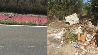 Alertan de acumulación de basuras y coloración del agua en S'Albufera d'Alcúdia