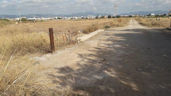 Emaya retira 110 toneladas de residuos y basura acumulada en solares y caminos públicos de Palma