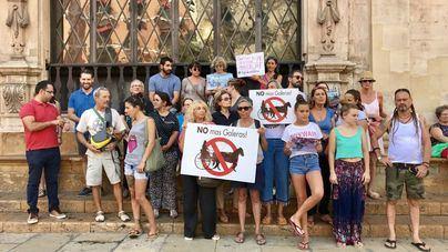 ICA Animalista censura que Cort se haya olvidado de las galeras eléctricas