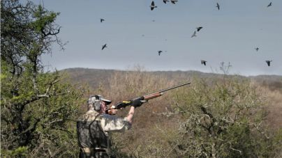 Los cazadores piden actuar en terrenos del aeropuerto para evitar accidentes por sobrepoblación