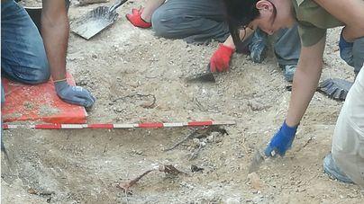 Confirman la excavación de fosas de la Guerra Civil en siete municipios de Mallorca este otoño