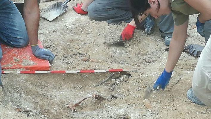 Hallan tres primeros cuerpos en la exhumación de la fosa de Marratxí