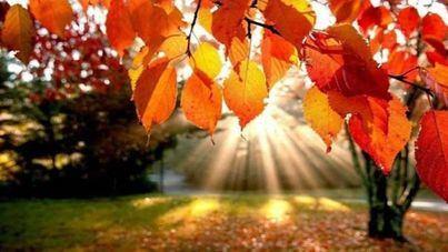 Previsión de un otoño muy cálido tras el verano más tormentoso del siglo XXI