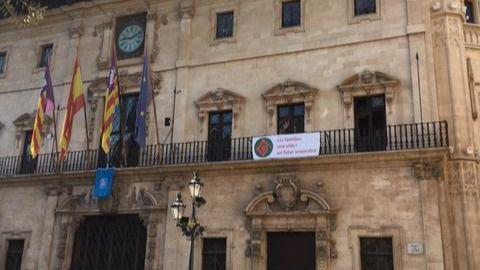 Cort presentó 173 alegaciones contra el informe de la Sindicatura de Comptes de 2014