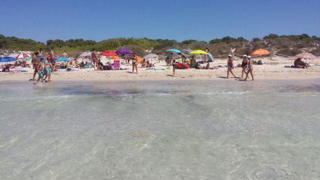 Casi ocho de cada diez lectores dicen haber tenido problemas para aparcar en las playas este verano