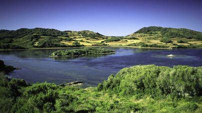 Parque natural Albufera des Grau (Maó, menorca)