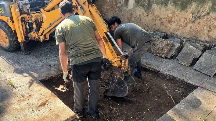 Finalizan los trabajos de la fosa de Sencelles sin hallar los cuerpos de las tres víctimas del franquismo