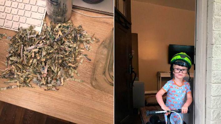 Adiós a mil dólares ahorrados: su hijo se los pasa por la trituradora