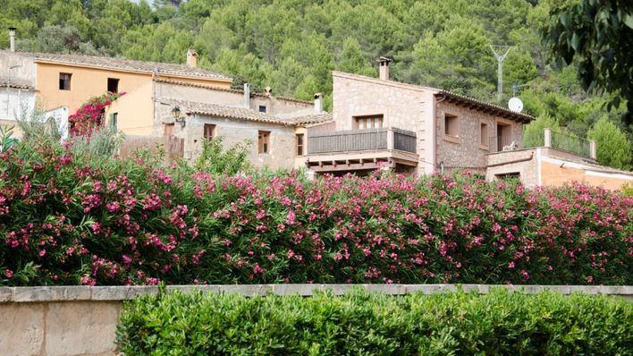 Andratx pide autorizar el alquiler turístico en suelo rústico protegido