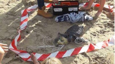 Recogen 153 kilos de residuos de la playa de El Toro
