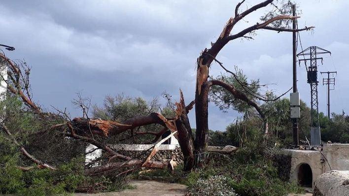 38.000 vecinos están sin electricidad en Menorca y no se restablecerá el servicio hasta en 24 horas