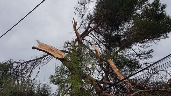 Red Eléctrica dice tener un Plan Extraordinario de Emergencias y prevé que el apagón será prolongado